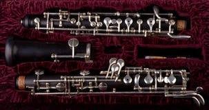 Oboe con el caso foto de archivo