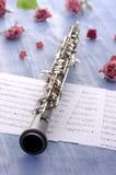 Oboe con las notas y la sensación del verano fotografía de archivo