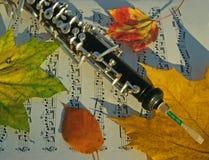 Oboe, lames d'automne et page de musique Image libre de droits
