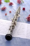 Oboe with notes and summer feeling Stock Photography
