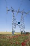 Obok elektrycznego góruje w róży polu Zdjęcie Royalty Free