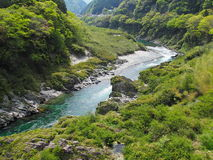 Oboke Gorge in Tokushima, Japan Royalty Free Stock Photos