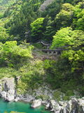 Oboke Gorge in Tokushima, Japan Royalty Free Stock Photo