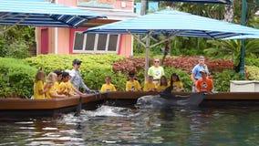 Obozów letnich dzieci muska delfinu przy Seaworld 2