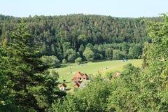 Obozować na łące wśród lasów Zdjęcia Stock
