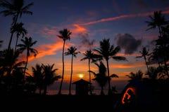 Obozować na kokosowej plaży Zdjęcia Royalty Free