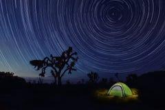 Obozować przy nocą w Joshua drzewa parku Fotografia Royalty Free