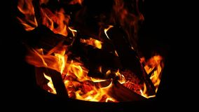Obozowi ogieni płomienie zbiory wideo