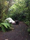 Obozowisko w lesie Obrazy Stock