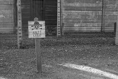 obozowy koncentracyjny Poland Zdjęcie Royalty Free