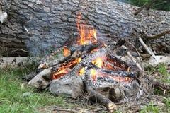 Obozowy ogień obraz stock