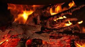 Obozowy ogień pod garnkiem zbiory wideo