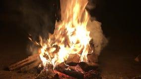 Obozowy ogień z dymem odizolowywającym na czarnym tle zbiory wideo