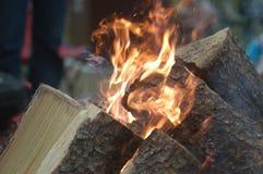 Obozowy ogień Fotografia Royalty Free