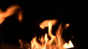 Obozowy ogie? w g?r? p?omieni ogie? na czarnym tle w zupe?nej ciemno?ci Naturalna termiczna energia w?glowod?r zbiory