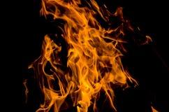 Obozowy ogień w nocy Obrazy Royalty Free