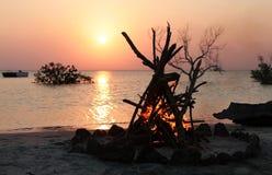 obozu plażowy ogień Zdjęcie Stock