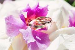 Obrączka ślubna z białymi i purpurowymi orchideami Zdjęcie Stock