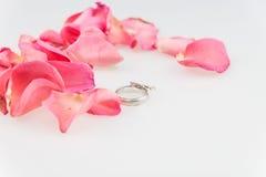 Obrączka ślubna z menchii róży płatkiem na białym tle Fotografia Stock