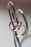 Obrączki ślubne dla kochanków na ślubie lub zobowiązaniu Fotografia Stock