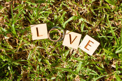 Obrączki ślubne, miłość Obrazy Royalty Free