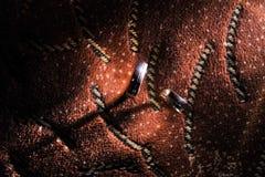 Obrączki ślubne na brown tle Zdjęcie Royalty Free