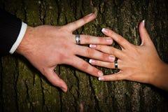 Obrączki ślubne Obraz Stock