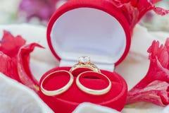 Obrączki ślubne w jewellery skrzynce Obraz Royalty Free