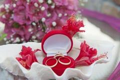 Obrączki ślubne w jewellery skrzynce Obraz Stock