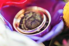Obrączki ślubne w kolorowych kwiatach Zdjęcie Stock