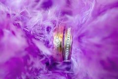 Obrączki ślubne w purpurowych piórkach Fotografia Royalty Free
