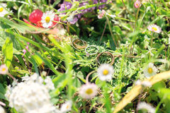 Obrączki ślubne w wildflowers i trawie Obrazy Stock
