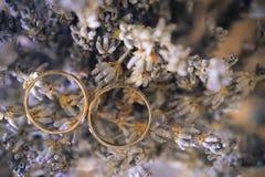 Obrączki ślubne w wysuszonej lawendzie Zdjęcia Stock