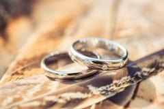 Obrączki ślubne z diamentami w piórkach Zdjęcie Royalty Free
