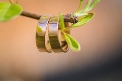 Obrączki ślubnej zbliżenie z czereśniowymi kwiatami zdjęcie stock