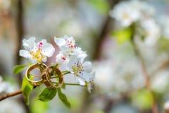 Obrączki ślubnej zbliżenie z czereśniowymi kwiatami obrazy stock