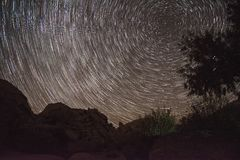 Obracanie gwiazdy - Josuha drzewo zdjęcia royalty free