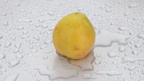 Obracanie, krople wodny spadek na dojrzałej żółtej moreli zbiory