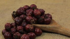Obracanie, rozsypisko suche rosehip jagody spada od drewnianej łyżki na burlap zdjęcie wideo