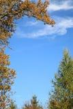 obramiający niebo Zdjęcie Royalty Free