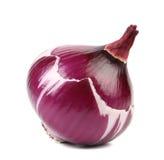 Obrana czerwonej cebuli żarówka. Obrazy Royalty Free