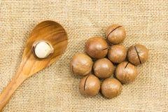 Obrana macadamia dokrętka i drewniana łyżka Fotografia Stock