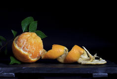 Obrana pomarańcze na łupku Obraz Royalty Free