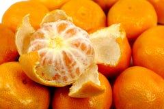 obrany tangerine Zdjęcia Stock