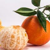 Obrany Tangerine i Tangerine Obraz Stock