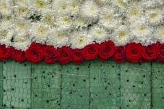 Obras en fase de creación: Pared de Rose Flowers en espuma floral fotografía de archivo