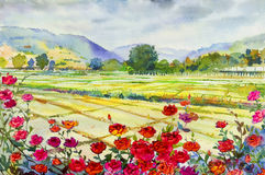 Obraz róże pole uprawne i góra emocja w niebie chmurnieją tło ilustracji