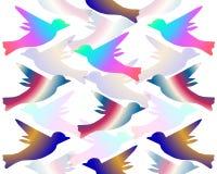 Obrazek Dla projekta Iryzuje ptaki zdjęcie stock