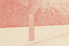 Obrazek drewniany drzwi malowa? z czerwonego koloru i czerwieni headge nad kamienn? piwnic? Kontrasta obrazek dla krajobrazowego  obrazy royalty free