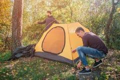Obrazek dwa młodego człowieka w lasowym kładzenie namiocie Jeden faceta pracy z arkanami Inny stojak za namiotem Pracują wpólnie zdjęcie stock